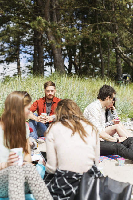 Friends enjoying picnic at forest — Stock Photo