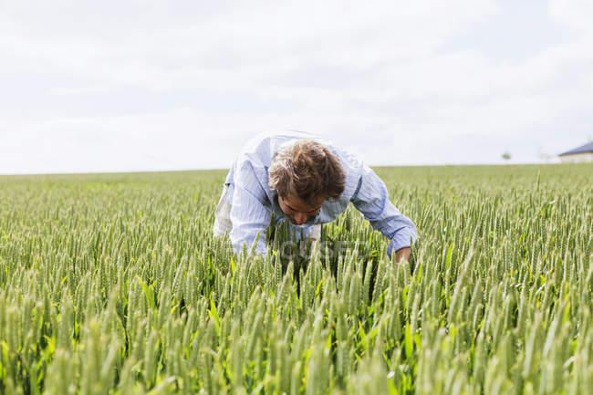 Mann auf der Suche im Feld — Stockfoto