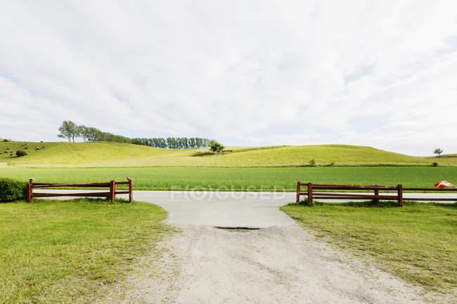 Campo gramado por rua — Fotografia de Stock
