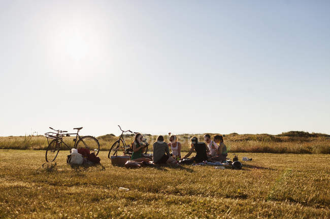 Friends relaxing at picnic — Stock Photo