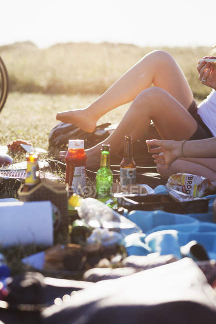Woman with food and drinks at picnic — Stock Photo