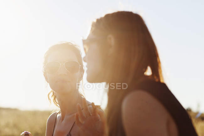 Друзья, говорить на пикник — стоковое фото