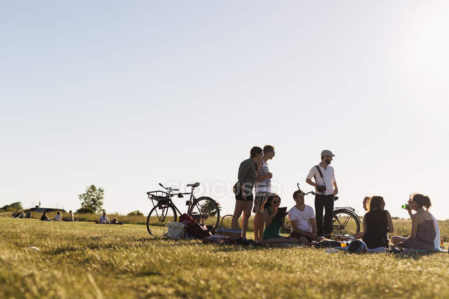 Friends enjoying picnic — Stock Photo