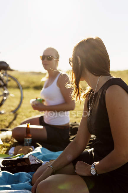 Friends enjoying picnic at park — Stock Photo
