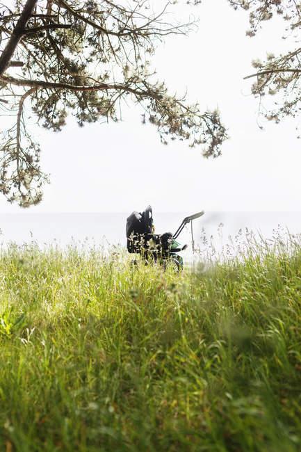Детские коляски на травянистые поля — стоковое фото