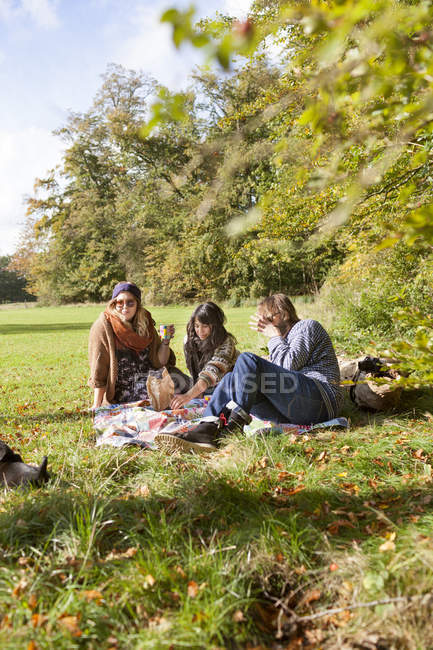 Group of friends having picnic - foto de stock