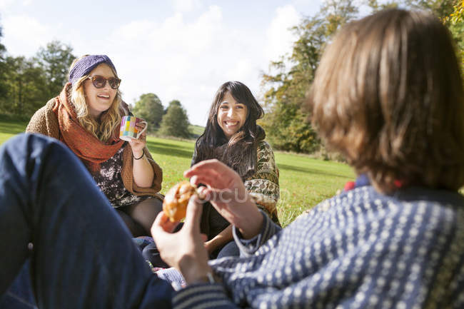 Young friends enjoying picnic — Stock Photo
