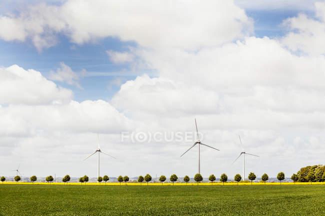 Éoliennes sur champ — Photo de stock