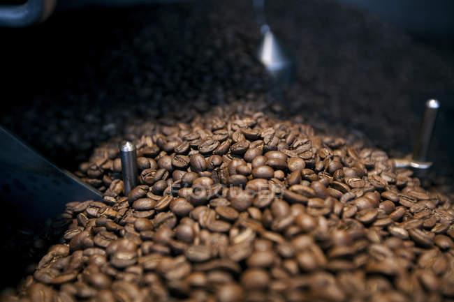 Granos de café en máquina de tostado - foto de stock