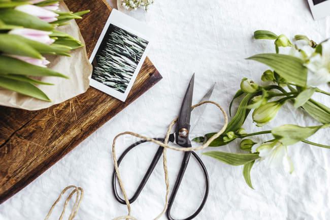 Квіти і фотографії на стіл — стокове фото