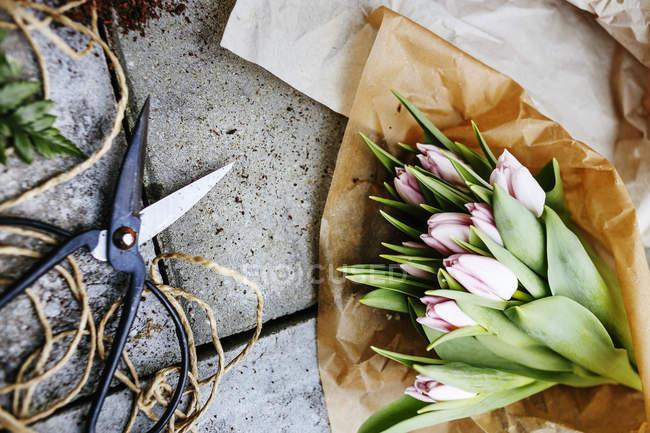 Букет тюльпана с ножницами — стоковое фото