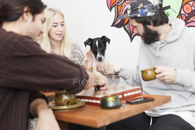 Друзья с собака игры игры в кости — стоковое фото