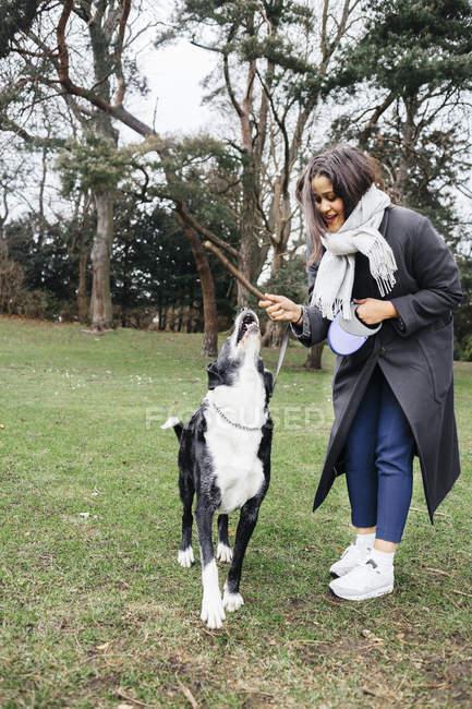 Женщина играет с собакой смешанной породы — стоковое фото