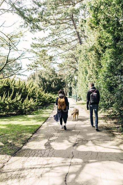Jeune couple marchant avec Eurasier — Photo de stock