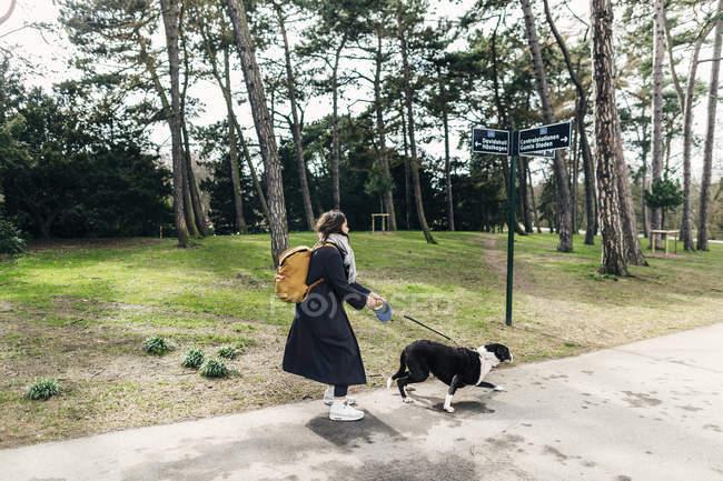 Frau geht mit Mischlingshund spazieren — Stockfoto