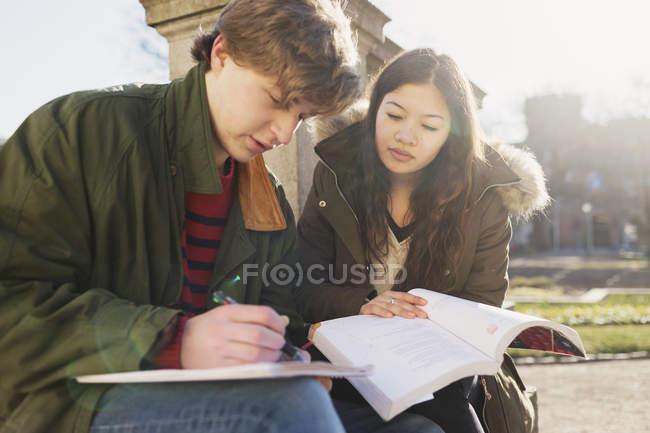 Estudantes universitários estudando no campus — Fotografia de Stock