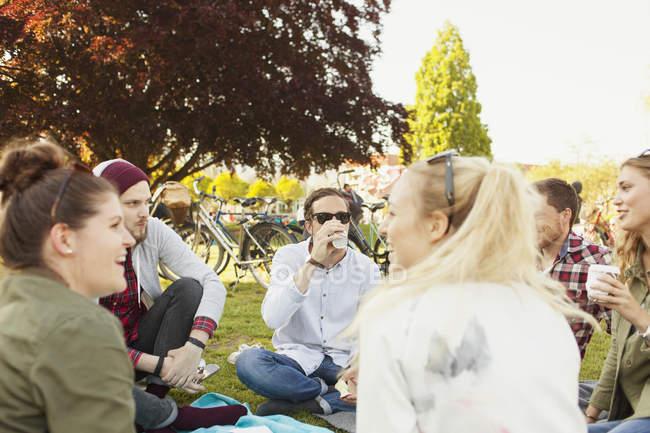 Friends enjoying picnic at park — Stock Photo
