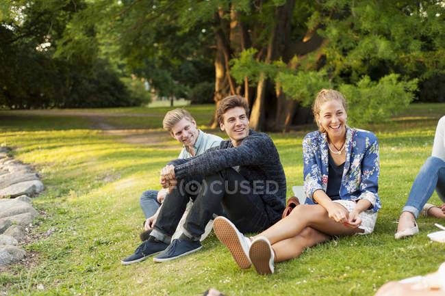 Amigos sentados en el campo de hierba - foto de stock