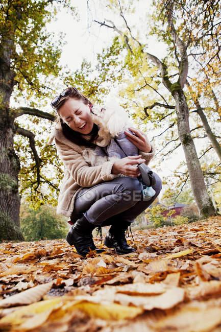 Бішон Фрізе лизати молода жінка — стокове фото