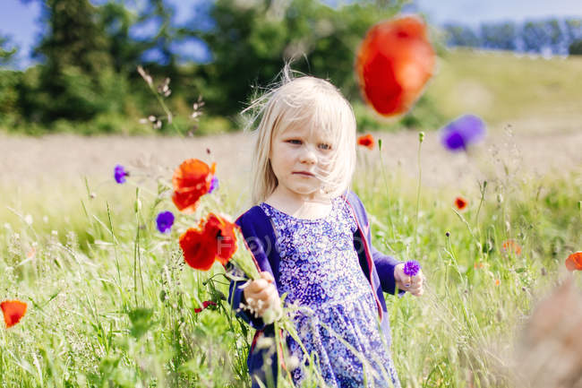 Girl holding poppy flowers — Stock Photo