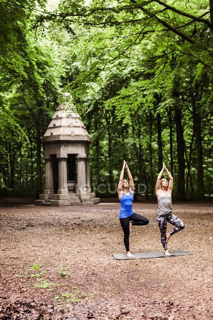 Giovani donne che praticano yoga — Foto stock