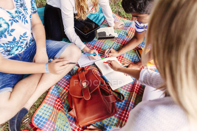 Student friends studying outdoors — Stock Photo