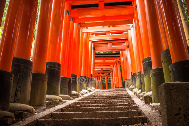 Path of torii gates — Stock Photo