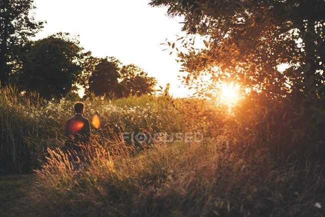 Man walking on field at sunset — Stock Photo