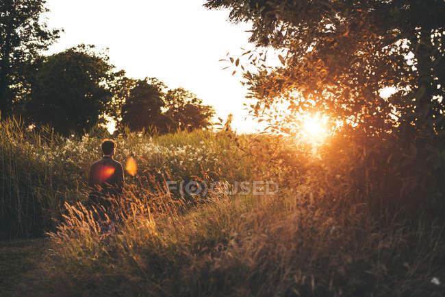 Человек идет по полю на закате — стоковое фото