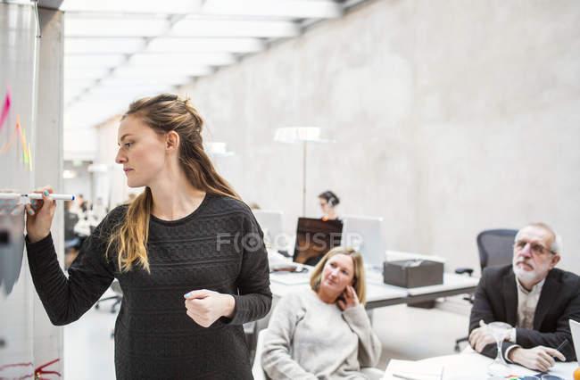 Geschäftsfrau hält Vortrag — Stockfoto