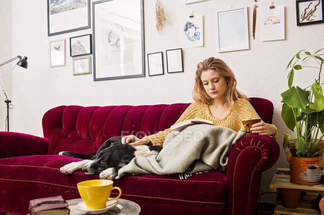 woman reading book on sofa stock photo 145099277