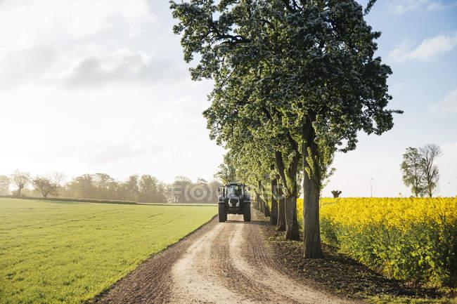Tracteur sur chemin de terre — Photo de stock