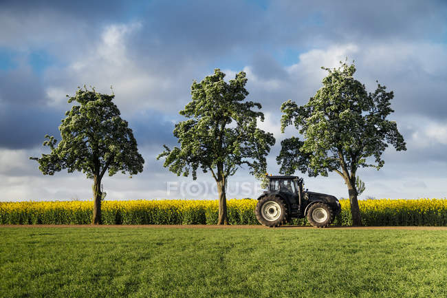 Tractor by trees on field — Stock Photo