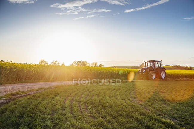 Tractor on dirt road — Stock Photo
