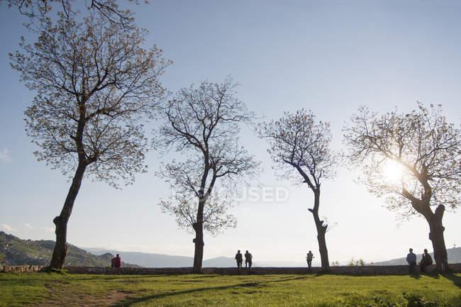 Gens par les arbres au parc — Photo de stock