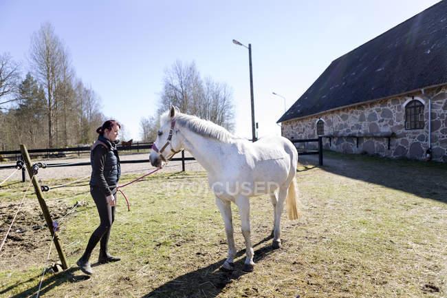 Frau mit weißen Pferd auf Feld — Stockfoto