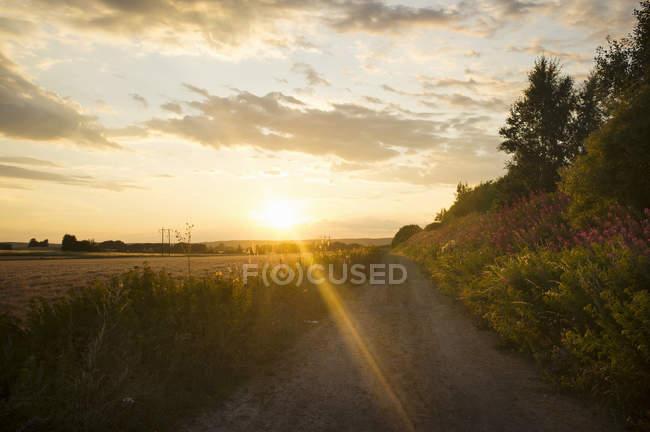 Paisaje calmo durante puesta del sol - foto de stock