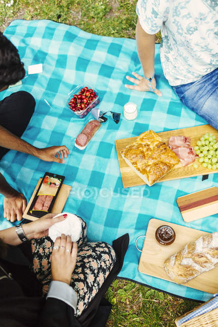 High angle view of friends enjoying picnic — Stock Photo