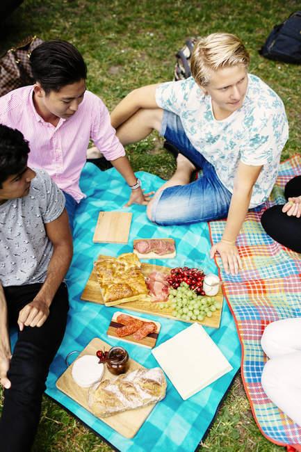 Essen beim Picknick mit Freunden — Stockfoto
