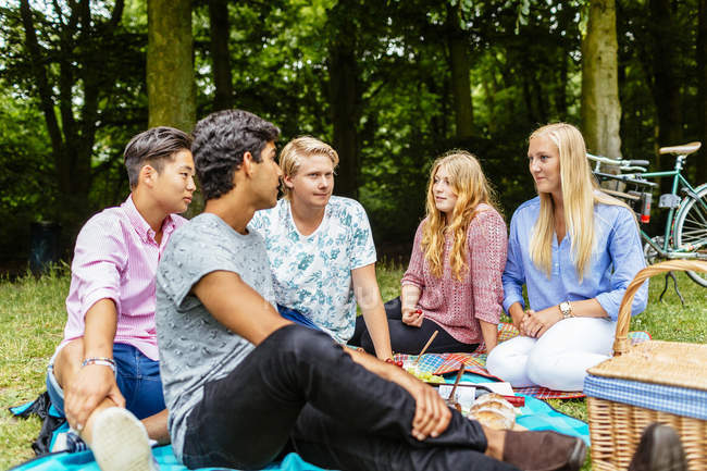 Friends enjoying picnic in park — Stock Photo