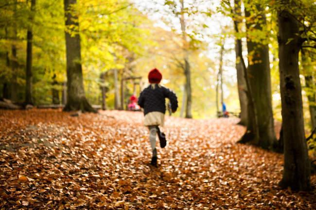 Ragazza che corre nella foresta durante l'autunno — Foto stock