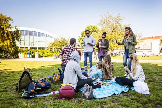 Freunde Picknick genießen — Stockfoto
