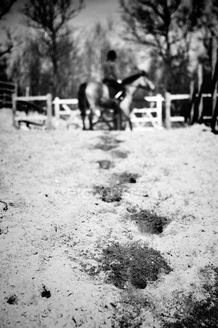 Person riding horse — Stock Photo