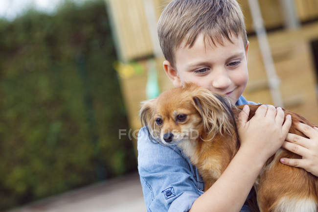 Happy boy hugging Chihuahua — Stock Photo