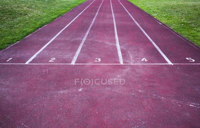 Красная беговая дорожка — стоковое фото