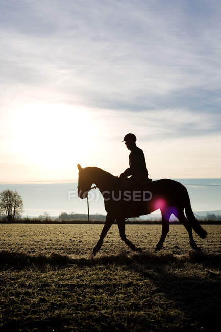 Silhueta jockey sentado no cavalo — Fotografia de Stock