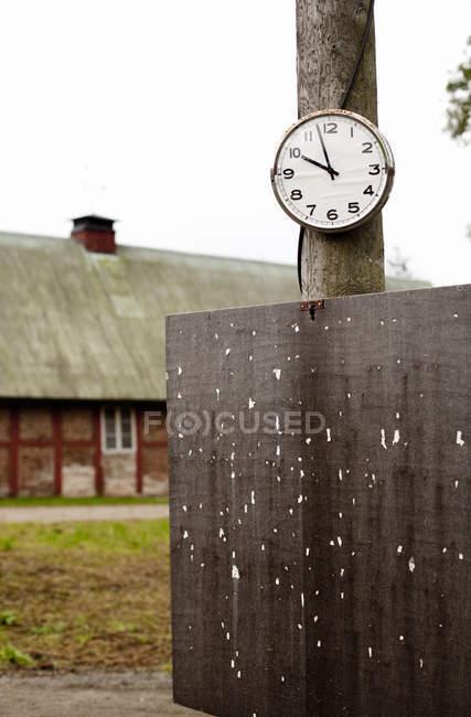 Годинник на стовбур дерева — стокове фото