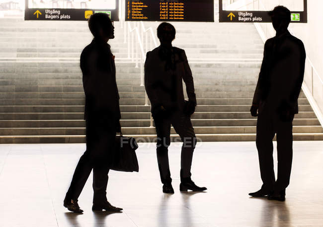 Silhouette business colleagues — Stock Photo