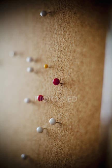 Thumbtacks on bulletin board — Stock Photo