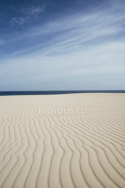 Пустыня и море, природный пейзаж — стоковое фото